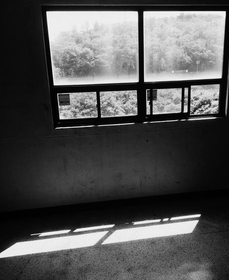 School Window Looking Into The Future Bright Future Dongguk University 2015  IPhoneography