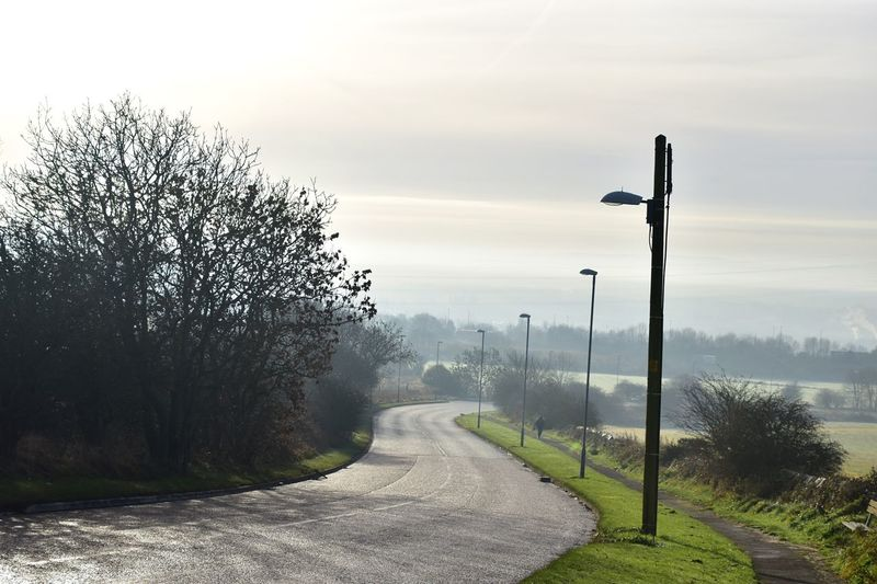 Taking Photos Road Misty Morning Sunny Day Frosty Telegram Poles Nikon D5500
