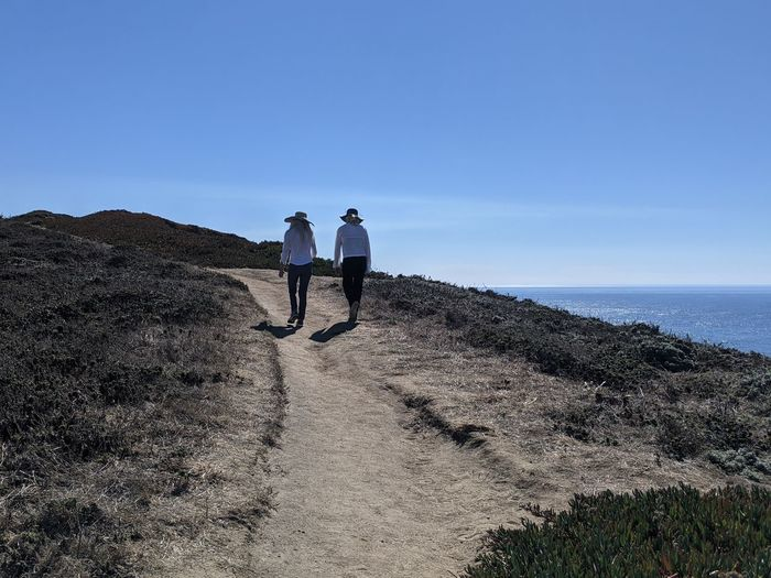 Rear view of men walking on sea shore against clear sky