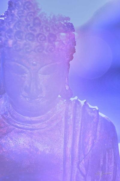 Buddah Buddha Art Art Of Buddah Namaste... Om Shanti Om Art OM Peace Meditation Meditate Mindfulness Gratitude Purple Buddah Lavendar Breathe Yoga Studio Yoga Yogi Yoga Art
