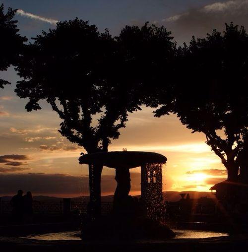 Assisi Creative