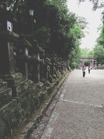 Shrine Short Trip Enjoying My Day Off