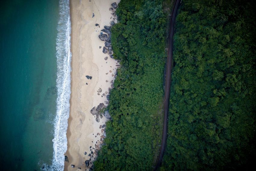 Land Beach Water Plant High Angle View Green Color Nature Tree Scenics - Nature Sand Beauty In Nature Sport Sea Day No People Outdoors Tranquility