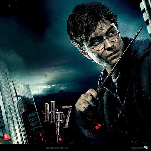 A melhor saga de todos os tempos ♡ Nunca me canso de olhar HarryPotterEAsReliquiasDaMorte