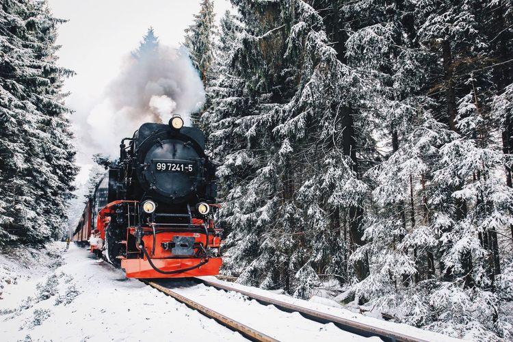 Hogwarts Express Harz Nature Snow Market Bestsellers April 2016 Bestsellers #HolidayMarketing