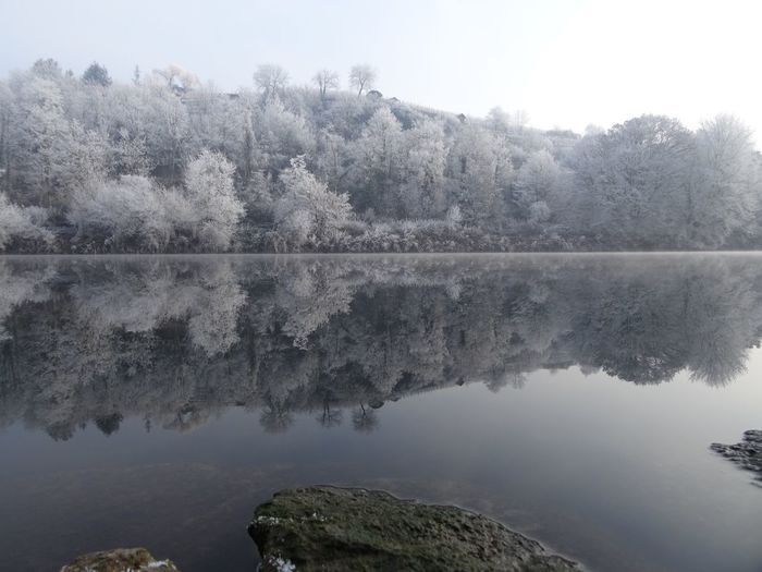 Tree Water Nature Reflection Scenics Beauty In Nature Sky Tranquil Scene Lake Outdoors No People Clear Sky Landscape Tranquility Day Mirror Neckar River White Frost Winter Wonderland Symmetry Perspectives On Nature Beauty In Nature Cold Temperature New Year Germany