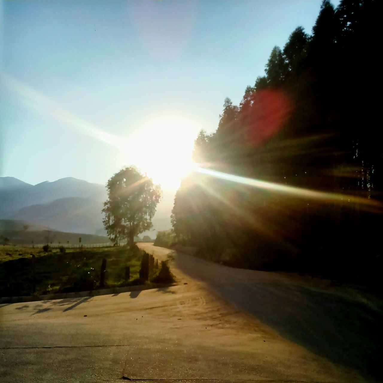 sunbeam, sun, lens flare, sunlight, nature, tree, tranquility, sky, sunset, road, scenics, outdoors, no people, tranquil scene, beauty in nature, landscape, day