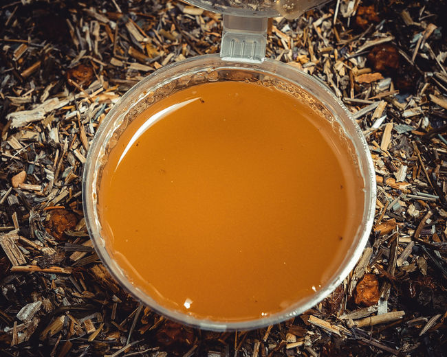 High angle view of drink on field