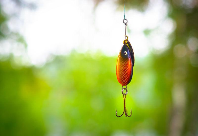 Angeln Köderfisch Spoon Blinker Fishhook Fishing Spinner Springtime To Angle