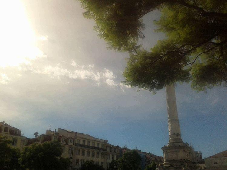 Sun Cloudporn Tree Porn Sky
