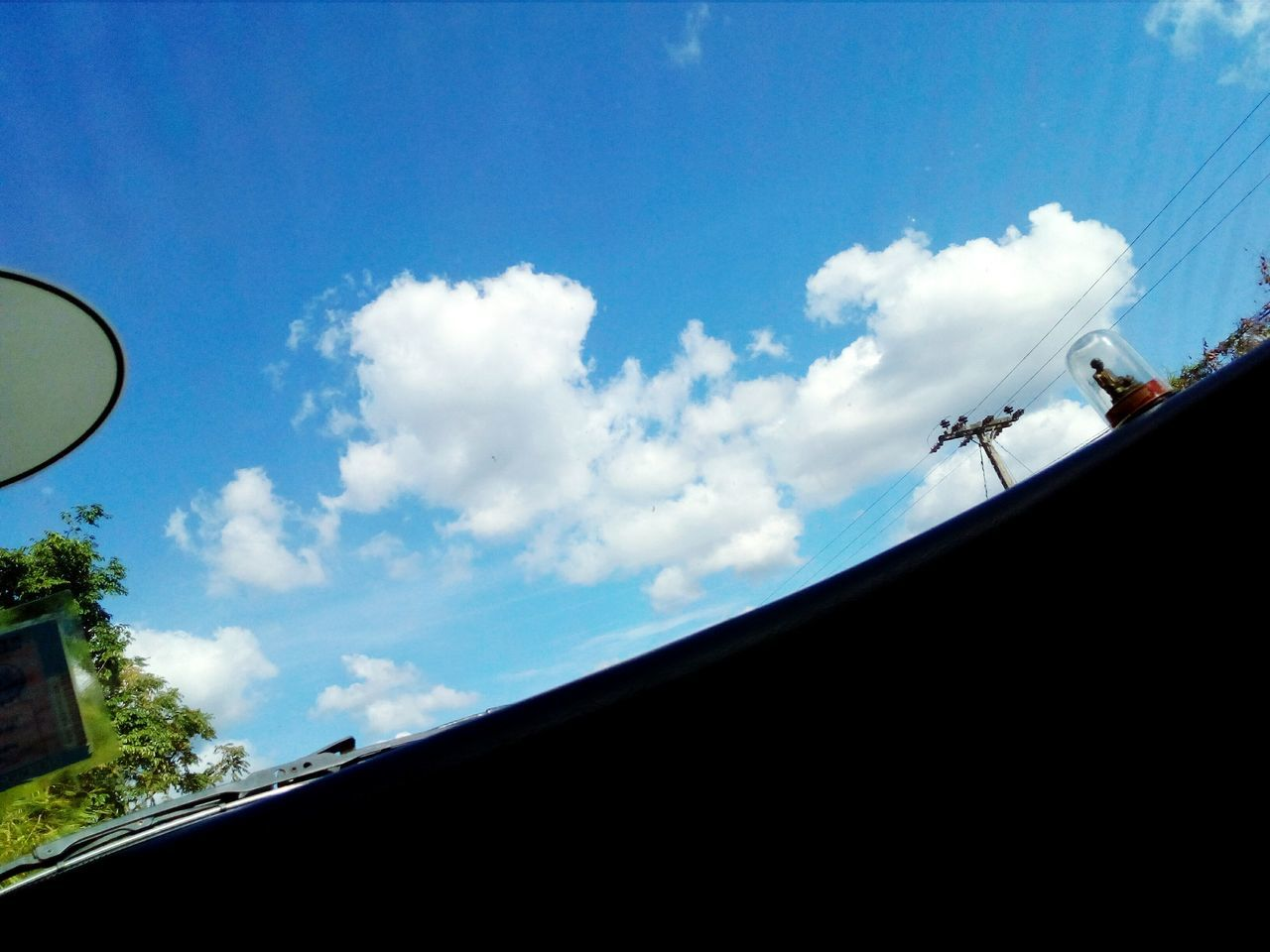 sky, low angle view, cloud - sky, day, blue, no people, nature, outdoors, tree
