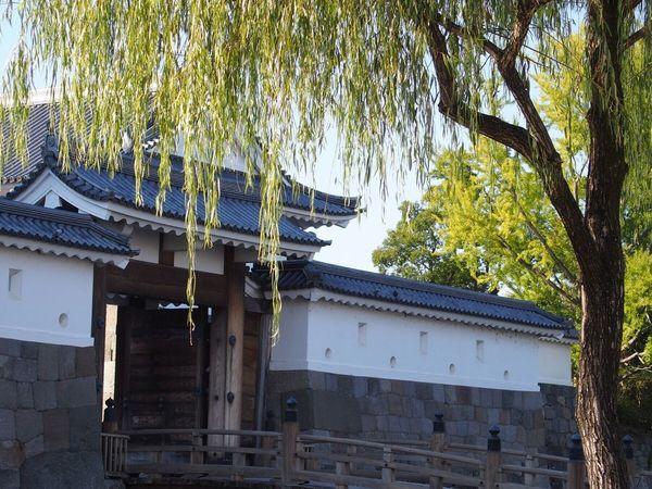 駿府城公園 Japan Japanese Castle