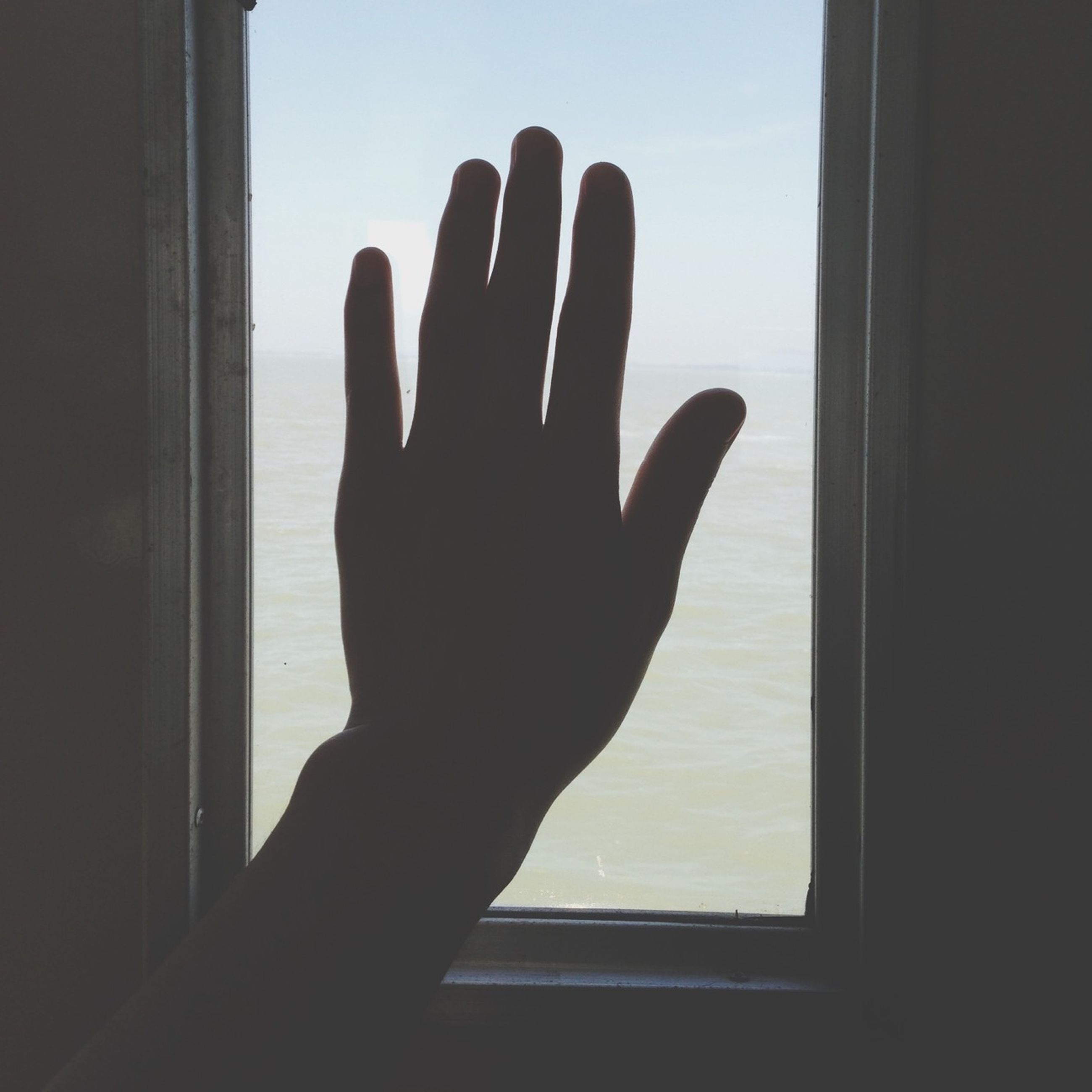person, indoors, part of, window, cropped, human finger, glass - material, sky, transparent, personal perspective, silhouette, unrecognizable person, close-up, holding, home interior, sunlight, day