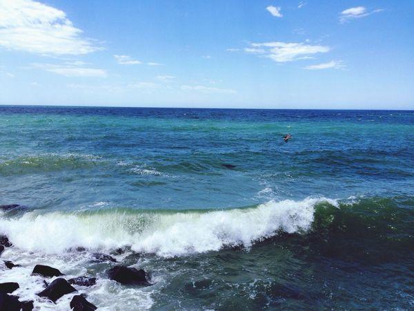 So serene Hello World Beach Photography Nature