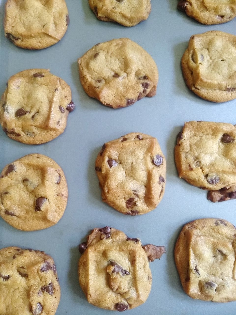 food, food and drink, freshness, sweet food, baked, cookie, indoors, still life, indulgence, temptation, chocolate chip cookie, unhealthy eating, directly above, ready-to-eat, no people, high angle view, chocolate, dessert, sweet, baking sheet, snack, tray