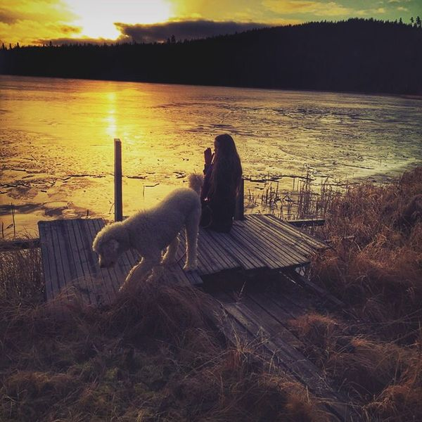 EyeEm Best Shots Sunset Sverige Sweden Dalarna Nature Girl And Dog Beatyful Nature Lake Winter Wonderland Winter Winterlake Poodle