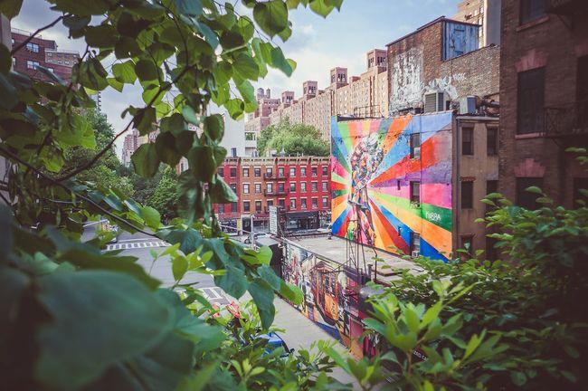 New York City Manhattan New York Graffiti The High Line Kobra KobraStreetArt Chelsea