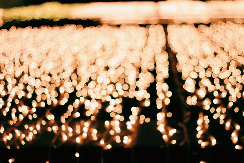 Christmas lights🌿 EyeEmNewHere Futurism Futuristic Serrano Market Place Market Outdoors Yellow Light Yellow Color Yellow Navidad Madrid Christmas Ornament Christmas Decoration Christmas Lights Christmastime Chistmas Lights Light No People Illuminated Close-up Outdoors Night Nature Freshness