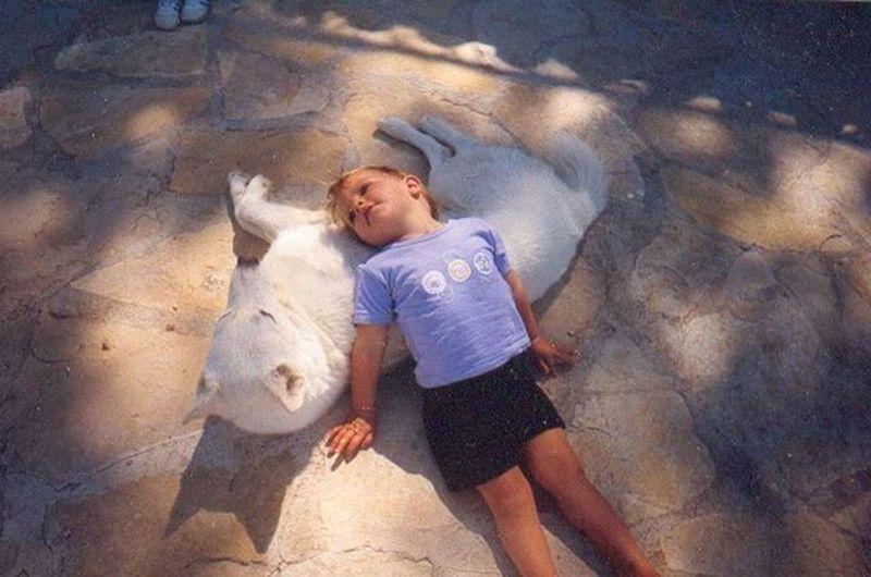 j'suis l'enfant des loups Wolf Reminds Me Enfance Souvenirs Enfantsdesloups Instagood Animegirl Petsagram Wolfy Love Life Cool Peace Girlwolf