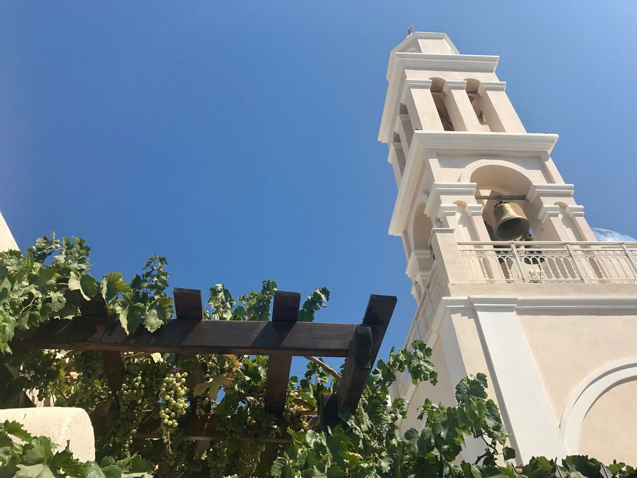 architecture, low angle view, built structure, building exterior, religion, day, outdoors, spirituality, place of worship, no people, tree, clear sky, sky