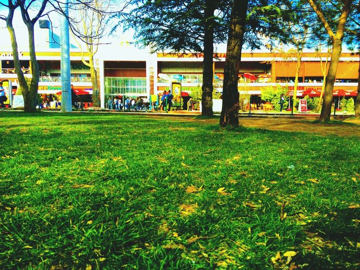 Gökkuşağı selçuk Selçuk üniversite konya conia Turkey First Eyeem Photo