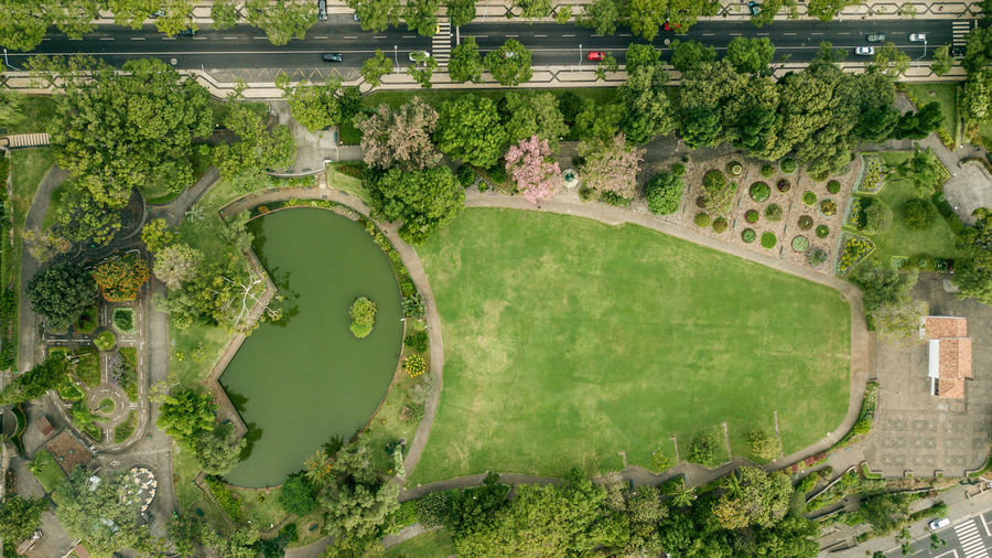 Aerial view of pond at park