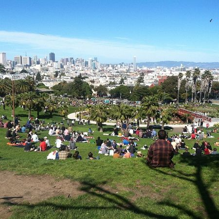 All these greenbacks Awesome Sanfran Goldengate Park