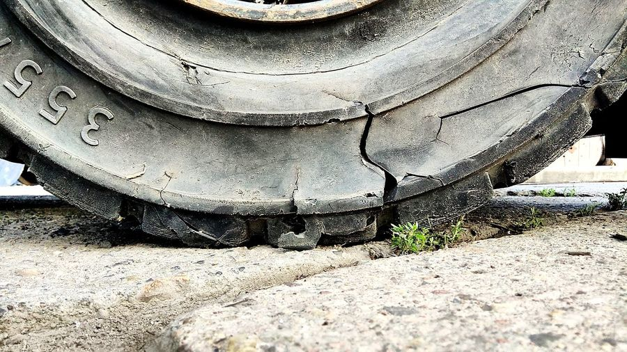 Four car wheels... (1/4) Green Dark Cracked Flat Tyre Darkness Sand Close-up Ground Tire Track Stone Tile Young Plant Dirt Track Shell Track - Imprint