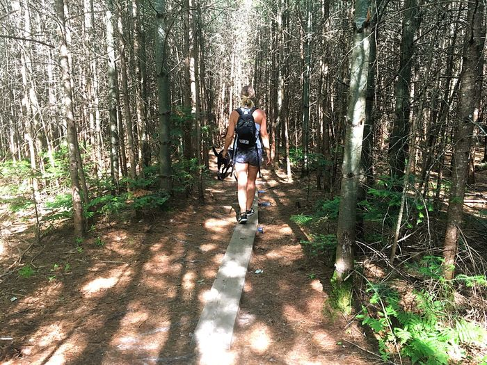 Allons là ou notre esprit peut se reposer! Eyeemnature Fromtheback Wooded Path Dailywalk Sunlight Shadow Nature Lifestyles Leisure Activity Full Length One Person Standing Women Outdoors