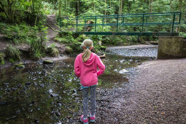 Deep in the woods Wigan Hindley Borsdane Woods WoodLand Stream