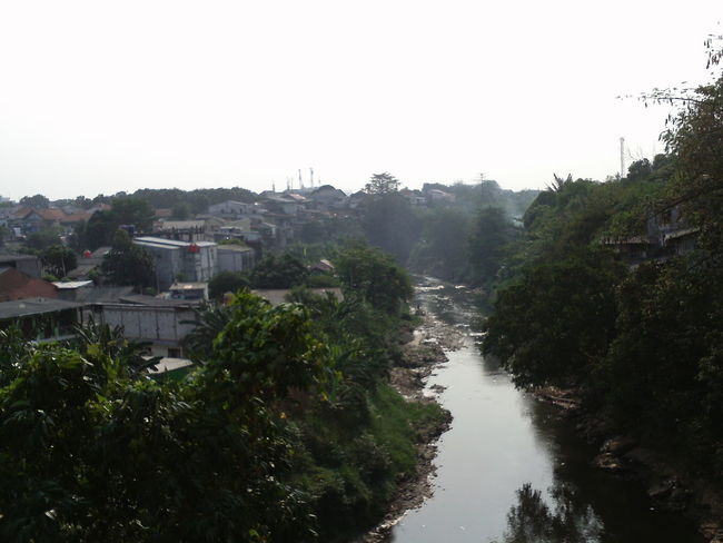 views of the ciliwung river seen from the balekambang area Beauty In Nature ❤️❤️ Green Scenic Building City Clear Sky Greenery Growth Location Nature No People Outdoors Plant Residential District River Riverside View Scenery Sky Town Tranquillity Tree Water