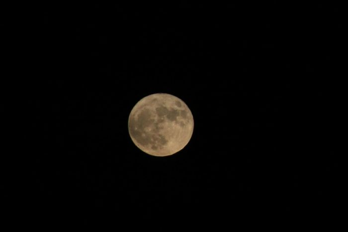 Trowback to the biggest supermoon in decades. And trowback to 2016 Supermoon Supermoon2016 Moon Night Astronomy Clear Sky Tranquility Sky Nature Tranquil Scene Planetary Moon Beauty In Nature BeautyInTheDark BeatyInTheNight Trowback Trowbackphoto 2016 Portugal Montijo Skyphotography Skylovers Sky_scapes Moon_lovers Moonset Tranquility