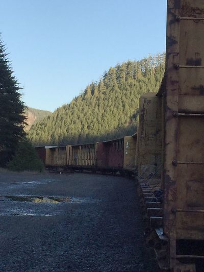 Copy Space No People The Way Forward Outdoors Pacific Northwest  No Edit/no Filter transportation Low Angle View IPhoneography Train Railroad