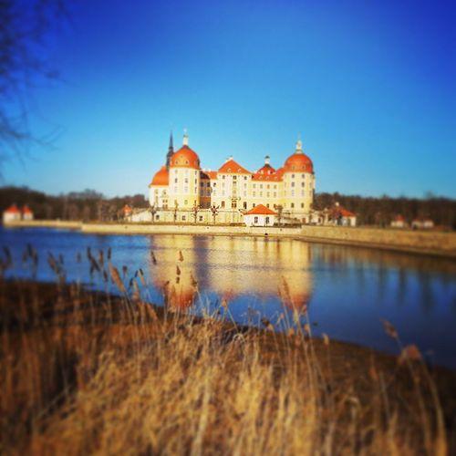 Castle Awesame Picofday
