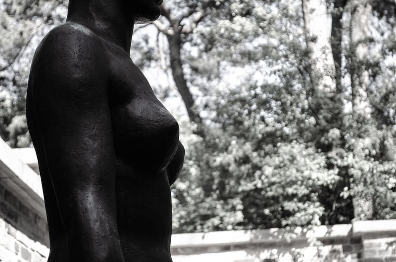 Side view of shirtless man statue against trees