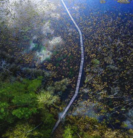 Above Aerial View Beauty In Nature Day Environment Forest Growth High Angle View Land Landscape Nature No People Non-urban Scene Outdoors Plant Road Scenics - Nature Tranquil Scene Tranquility Transportation Tree