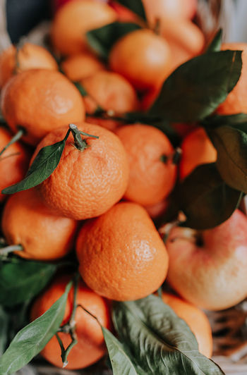 Tangerines with leaves and apples in the basket. Close up. Food And Drink Food Healthy Eating Fruit Freshness Wellbeing Orange Color Plant Part Leaf Orange Close-up Orange - Fruit Citrus Fruit Day No People Large Group Of Objects Still Life Abundance Selective Focus Nature Ripe
