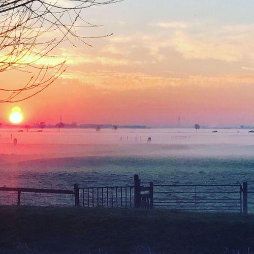 Sunset Sea Water Beauty In Nature Sky Scenics Horizon Over Water