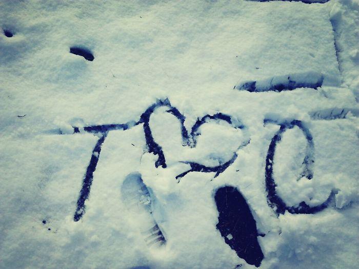 N The Snow !