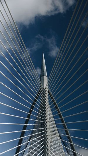 Architecture Bridge Bridge - Man Made Structure Building Exterior Built Structure Cable-stayed Bridge City Cloud - Sky Connection Day Directly Below Engineering Low Angle View Modern Nature Office Building Exterior Outdoors Sky Skyscraper Steel Cable Suspension Bridge Tall - High Transportation