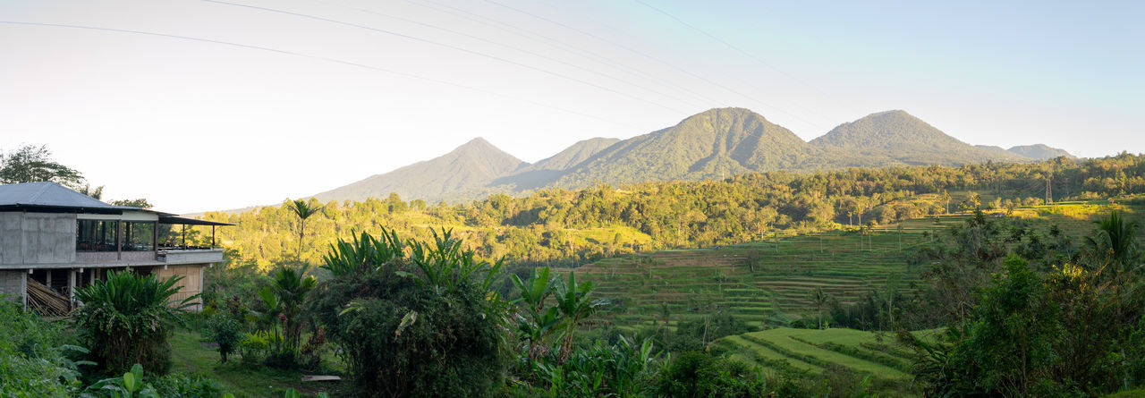 Bali Jatiluwih Rice Terrace Mountain View Architecture Beauty In Nature Built Structure Day Environment Field Land Landscape Mountain Mountain Range Nature No People Outdoors Plant Rice Field Rural Scene Scenics - Nature Sky Tranquil Scene Tranquility Tree