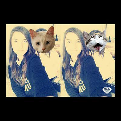 Kedi kız ??✌???
