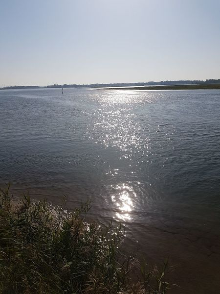 Horizon Over Water Sunlight Landscape Water Nature Outdoors Beauty In Nature Scenics Tranquil Scene
