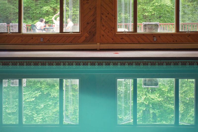 No swimming Swimming Pool Window Water Indoors  Day Green Color Glass - Material Transparent Reflection Nature Wood - Material Swimming Pool Luxury House
