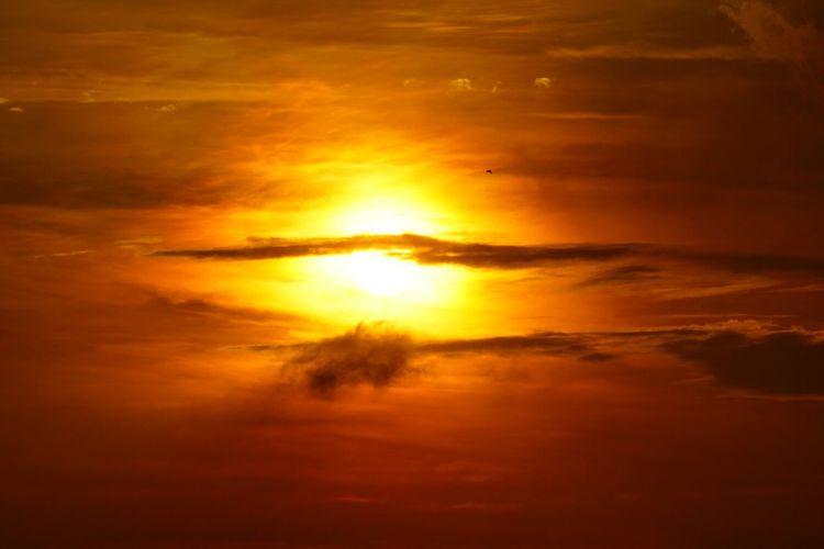 チョイ前の空とチッチャイ鳥w Dusk Small Bird Silhouette Sunset Capture The Moment Sky And Clouds Beautiful Nature Getting Inspired Still Life From My Point Of View Light And Shadow Abstract Fantasy Photography Fine Art EyeEm Nature Lover Beautiful APS-C EyeEm Best Shots Feeling♪ 16_05 Nature Quite Moments Landscapes The Great Outdoors - 2016 EyeEm Awards Thanks😋 https://youtu.be/ciH1DWGwayU