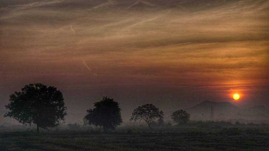 Village Photography ,Sunrise Moment Tree Field Atmospheric Mood Agriculture Sun Beauty In Nature Landscape Nature Cloud - Sky Outdoors Rural Scene Scenics No People Grass Tree Trunk Fog Mountain Tree Area Day EyeEm Villages Rural Landscape Ruralphotography Rural Scenes Nwin Photography Sony Alpha 6000