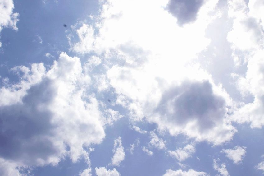 Backgrounds Cloud - Sky Cloudscape Dramatic Sky Weather Nature Sky Only Storm Blue Sky Outdoors No People Wind Pattern Scenics Beauty In Nature Day