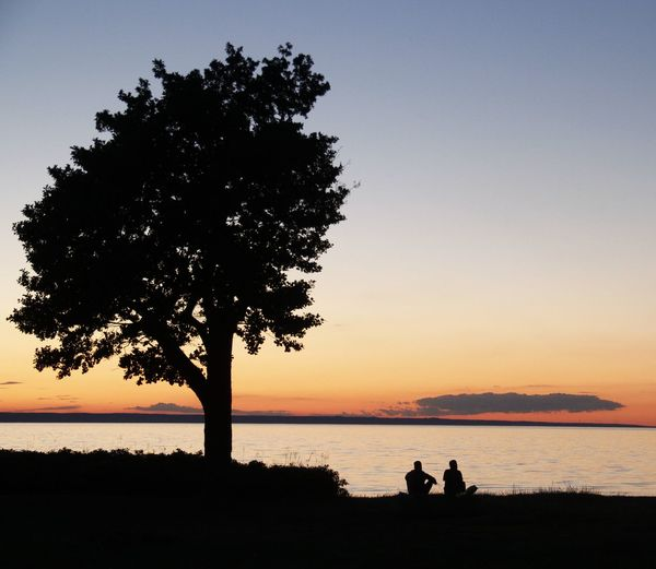 Rear view of people sitting by lake during sunset