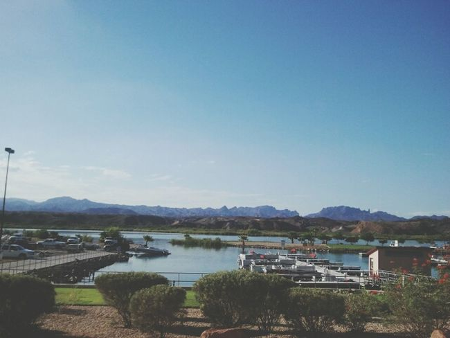 i miss the Lake // Havasu Lake Havasu City Arizona