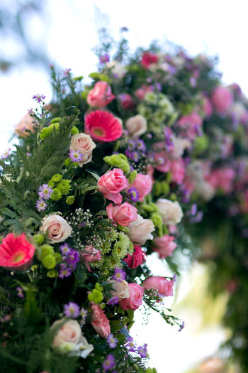 Close-up photo of the wedding arch which is beautifully decorated with various fresh flowers at outdoors Flower Flowering Plant Plant Freshness Fragility Nature Growth Beauty In Nature Selective Focus Close-up Day Pink Color No People Flower Head Petal Focus On Foreground Outdoors Tree Inflorescence Bunch Of Flowers Flower Arrangement Bouquet Wedding Ceremony Celebration Decoration